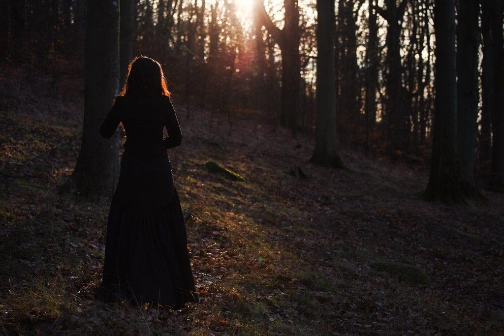 Sun-in-dark-forest